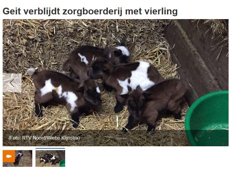 RTV Noord bericht